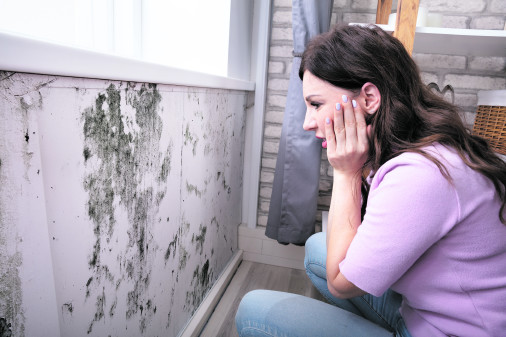 Frau vor Schimmelflecken an der Wand © Andrey Popov/stock.adobe.com