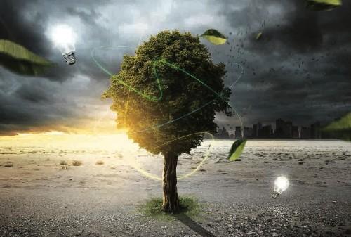 Baum im Klima- und Energiewandel © lassedesignen/stock.adobe.com
